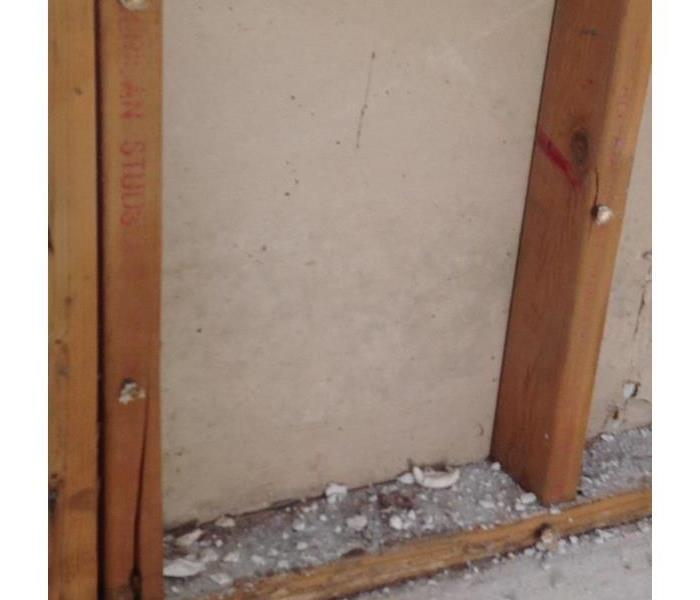 Mold inside wall cavities