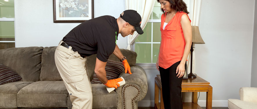 Elgin, IL carpet upholstery cleaning