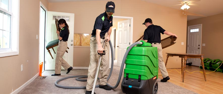 Elgin, IL cleaning services