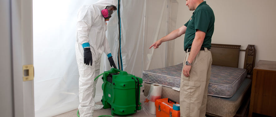 Elgin, IL mold removal process